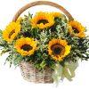Ngày ấu thơ hoa sinh nhật