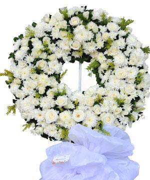 hạ trắng hoa chia buon