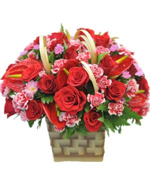 Phố hoa hoa sinh nhật