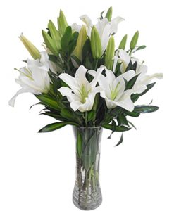 Long lanh hoa sinh nhật