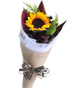 Hướng về niềm hạnh phúc hoa sinh nhật