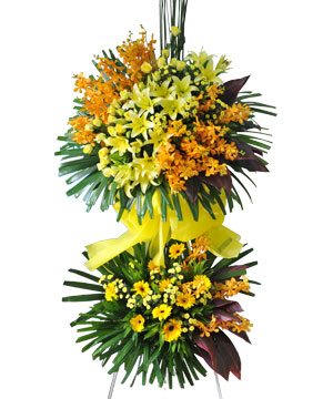 Thăng hoa hoa khai trương