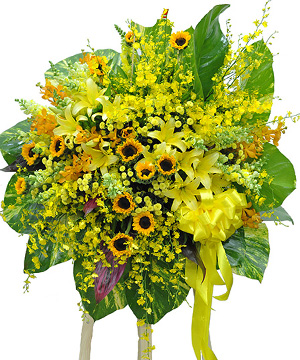 Sáng ngời hoa chúc mừng
