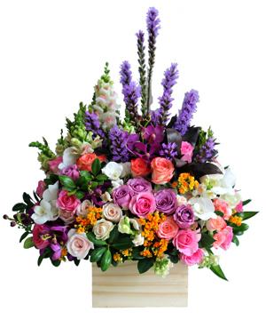 Khung trời tuổi mộng hoa sinh nhật