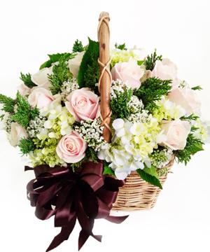 Khát vọng hoa sinh nhật