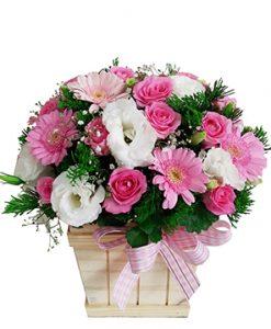 Dễ thương hoa sinh nhật