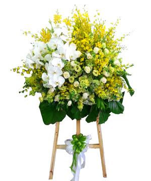 Đỉnh thành đạt hoa chúc mừng