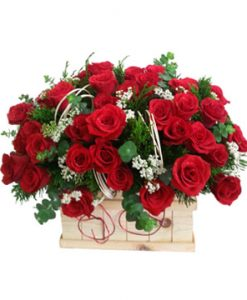 Nụ hồng hoa sinh nhật