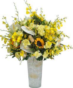 Sun flower hoa sinh nhật