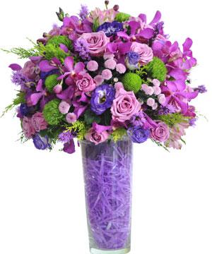 Cung đàn tình yêu hoa sinh nhật