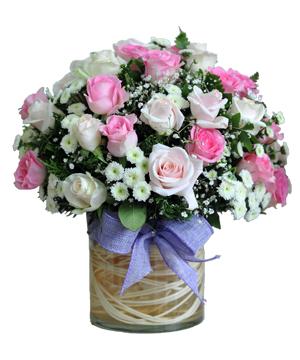 Hai lối mộng hoa sinh nhật