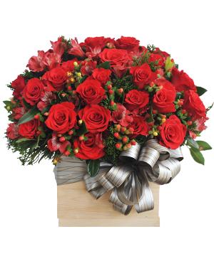 Mến nhau hoa sinh nhật