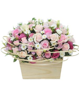 Quyến rủ hoa sinh nhật