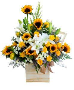 Hoàng hôn hoa sinh nhật