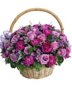 Tím mộng hoa sinh nhật