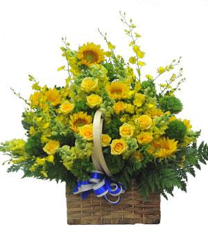 Vàng son hoa sinh nhật