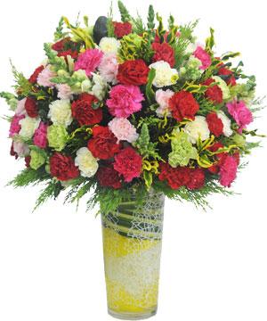 Cõi yêu hoa sinh nhật