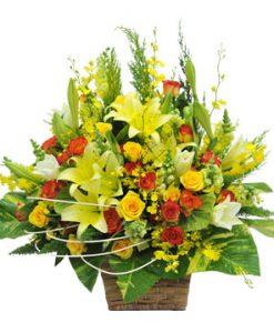 Ban mai hoa sinh nhật