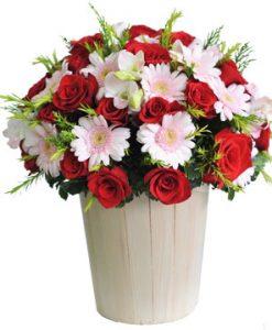 Vui tươi hoa sinh nhật
