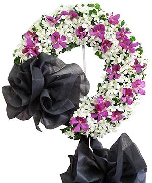 gió buồn hoa tang le