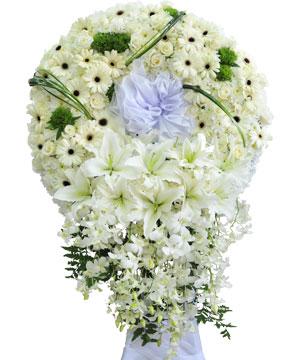 hạt trắng hoa tang lễ