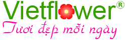 logo chốt footer