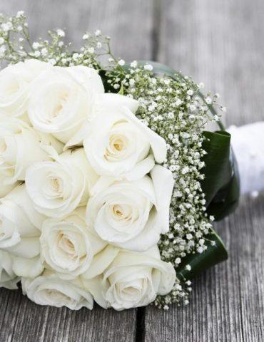 Đón nàng hoa cưới