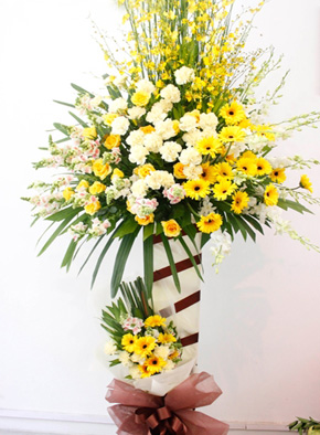hoa khai tương vinh hoa