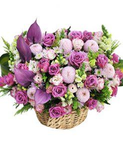 hoa sinh nhat vfl003