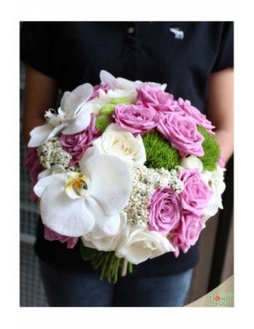 Hoa cam tay co dau duyên dáng