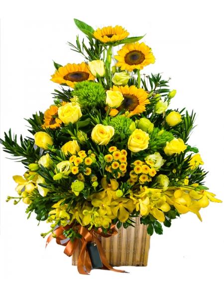 Lẵng hoa mừng khai trương giá rẻ sắc vàng rực sáng
