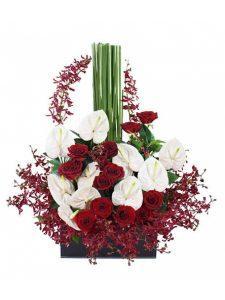 Lẵng hoa mừng khai trương giá rẻ sắc đỏ mê hoặc