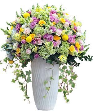 vườn thảo ngọc hoa sinh nhat cho sep